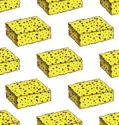 Sketch sponge in vintage style vector image