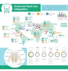 Dental infographics vector image vector image