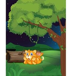 An orange cat vector