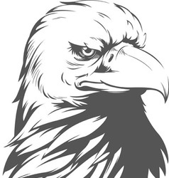 Bald Eagle Silhouette vector image