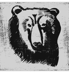 Bear head hand drawn sketch grunge texture vector