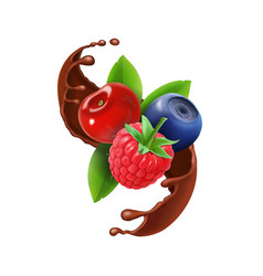 Berries in chocolate splash realistic vector