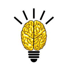bulb as the brain vector image