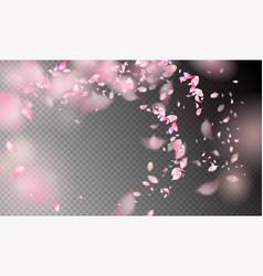 flower petals in the wind vector image