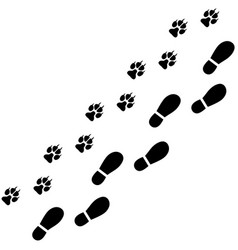 Traces of man and dog on white background vector