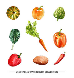 Vegetable collection design isolated watercolor vector