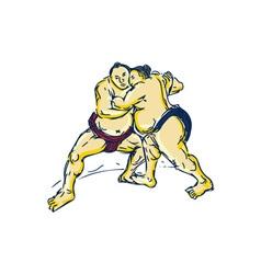 Japanese Sumo Wrestler Wrestling Drawing vector image