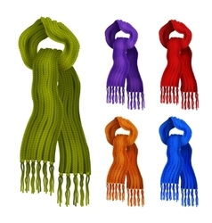 Knitted scarf color set vector image vector image
