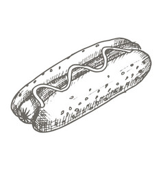 vintage hot dog drawing hand drawn vector image vector image