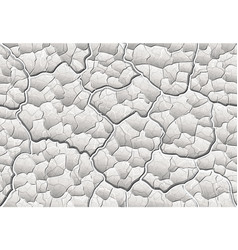 white decorative plaster with convex elements and vector image