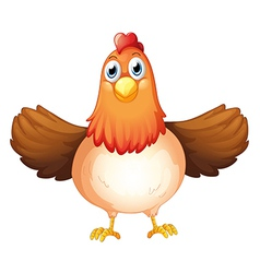 A fat mother hen vector image vector image