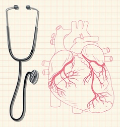 Stethoscope and human heart vector image vector image