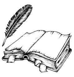 drawing of opened book with feather vector image