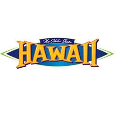 Hawaii The Aloha State vector