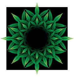Round pattern from cannabis leaf on black vector image