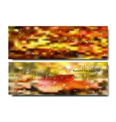 Horizontal Banners Set with Water Drops on the vector image vector image