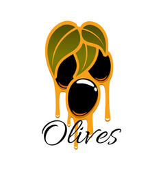 black olives branch and olive oil icon vector image