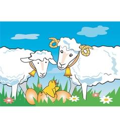 Sheep ram chicken vector image