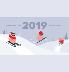 funny cartoon pigs sliding skiing vector image
