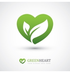 Green heart with leaves vector image