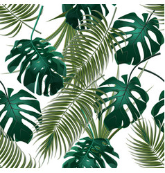 Jungle thickets of tropical palm leaves and vector