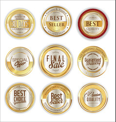 Luxury gold and silver design elements vector