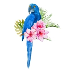 Nice watercolor blue parrots vector image vector image
