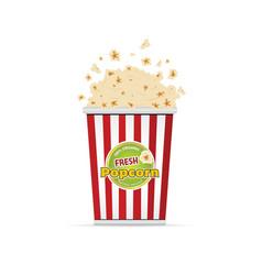 Popcorn fresh food vector