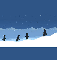 silhouette of penguin on ice beauty landscape vector image