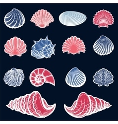 Colorful sea shell set vector image vector image
