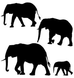 Elephants Silhouettes vector