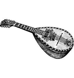 Mandoline vector