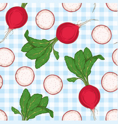 seamless pattern radish with green top vector image