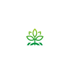 seed green leaf plant ecology logo vector image