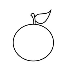 Silhouette of orange fruit food icon vector