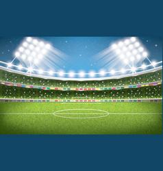 Soccer stadium football arena vector