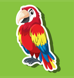 a parrot cartoon character vector image