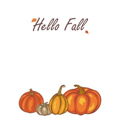 autumn Pumpkin harvest vector image