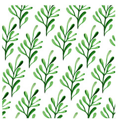 botanicals pattern herbs leaf background im vector image
