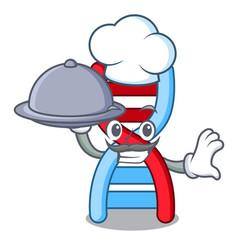 Chef with food dna molecule mascot cartoon vector