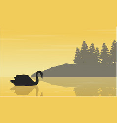 Landscape of swan on lake silhouettes collection vector