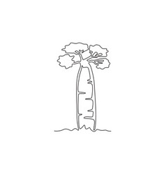 one continuous line drawing big and sturdy baobab vector image