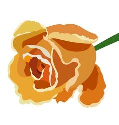 Orange rose vector