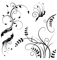 wild flower silhouettes vector image