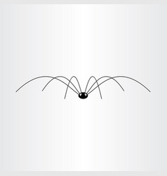 black spider insect icon vector image