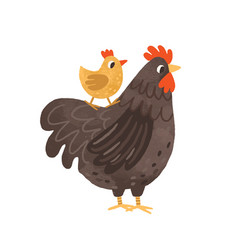 Cute hen standing with yellow chicken on its back vector