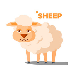 sheep funny animal isolated flat cartoon vector image