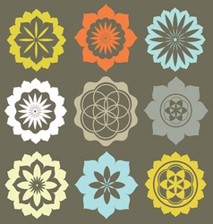 Floral esoteric elements vector image vector image