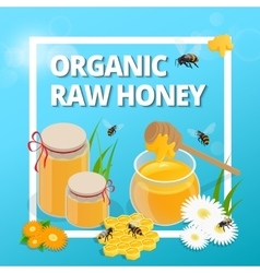 Organic raw honey Greeting card vector image vector image