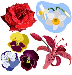 Set of flowers without gradient vector image